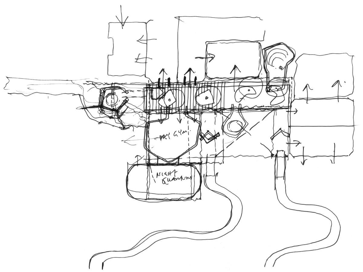 gorilla kingdom london zoo proctor matthews architects Sperm Whale Diagram initial concept boardwalk diagram