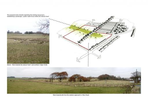 Extending the surrounding landscape onto the site
